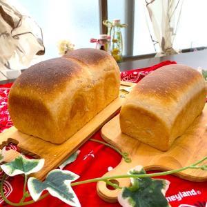 お一人様パン祭り(≧∀≦)枇杷酵母と桃酵母!