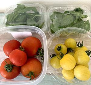 kuwachan 農園の野菜だよ