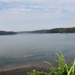 狭山湖の自然とノゴマ