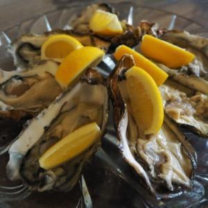 まぼろしの牡蠣