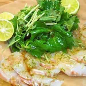 鯛めしと鯛と三つ葉のサラダ