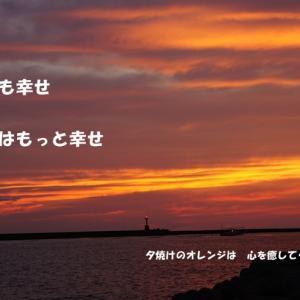 今日も幸せ 明日はもっと幸せ