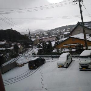 松江は今日も雪だった。
