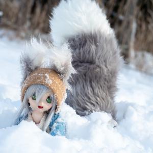 20-21帰省撮り Part4~とある毛玉の雪遊び~