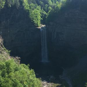 犬連れ旅♪Taughannock の滝州立公園 Taughannock Falls