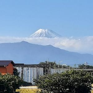 家族には不評のショートカットと 久しぶりの雪の富士山