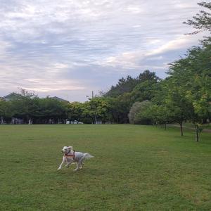 稲毛公園に集合
