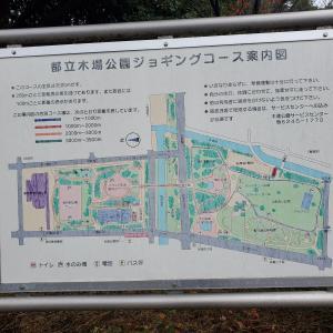 昨日は茜浜へ今日は東京木場公園へ