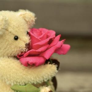 愛を強く求めるのは、「不完全な私」という考えがあるから?【引き寄せの法則】