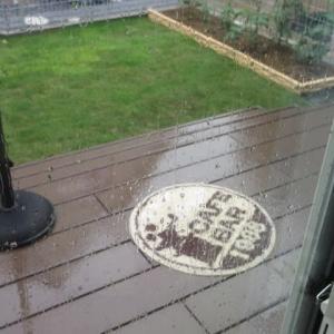 雨の日は・・・