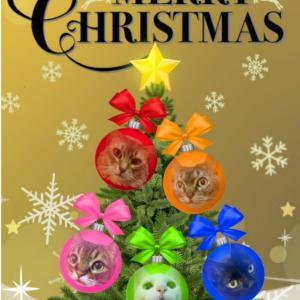 1970.サプライズクリスマスカードとフレーメン