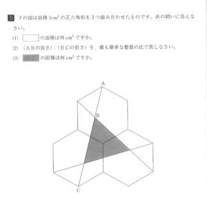 H25  洛南  正六角形問題