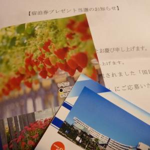 11月12日の当選3個♪「宿泊券」「ゲームソフト」「BD」