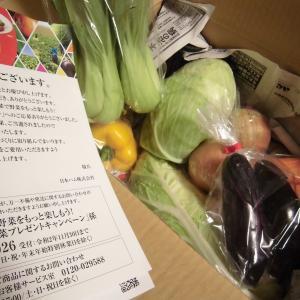 10月29日の当選3個♪「野菜」「商品券」「スキンケア商品」