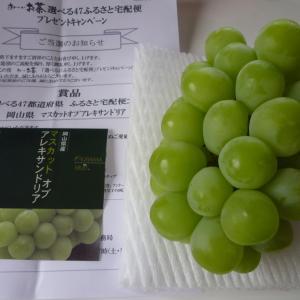 6月日の当選2個♪「果物」「電子マネー」