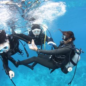 沖縄旅行④体験ダイビング写真
