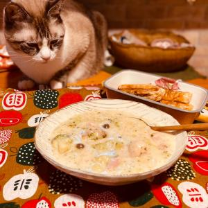 猫も食べたい?クリームシチュー❤️