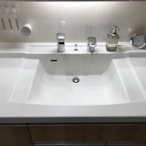リアル洗面所