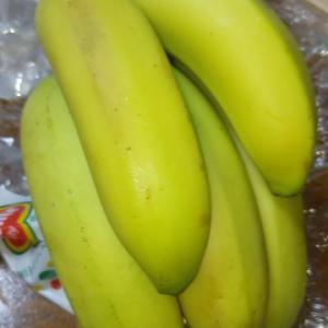 このぐらいの青いバナナなら、まだ食べられるんですね!