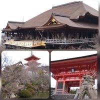 京都へ 縁切り&復縁 ①