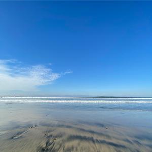 今週もヨガYouTube配信、そして海での早朝散歩