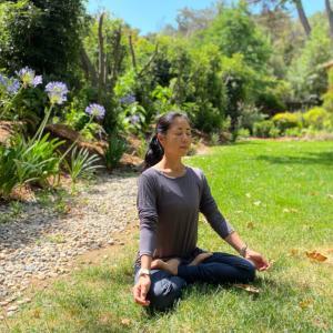 陰ヨガとマインドフルネス瞑想のワークショップ、いよいよ来週です!