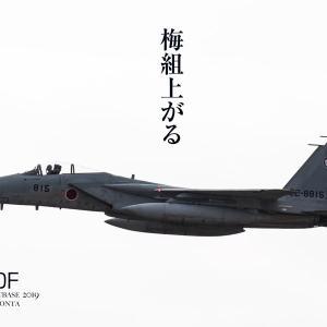 新田原基地航空祭2019 その13  F-15 梅組、飛びました