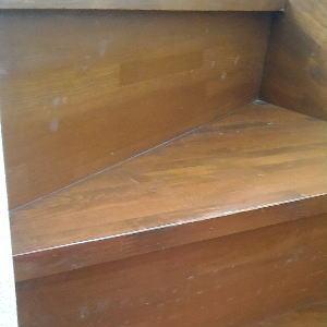 階段のカビ