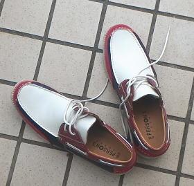 夫の変な靴と消臭ドライ