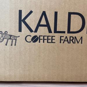 【カルディ通販】購入品① 〜アイスコーヒーはじめました〜