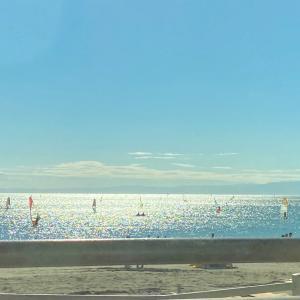 すかいらーく優待。と海。