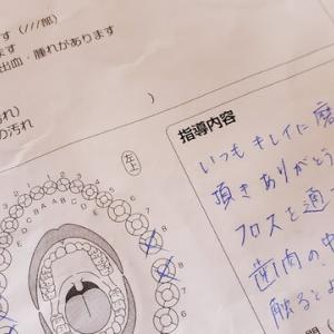 9月8日「本日のおすすめ」