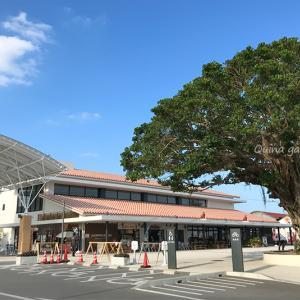 あさイチ『JAPA-NAVI 沖縄』で紹介されたお店