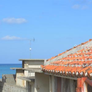 12月の沖縄旅行 今年も行ってきました