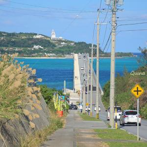 片瀬那奈が訪れた沖縄『美らの島の七色の景色』ロケ地をおさらい