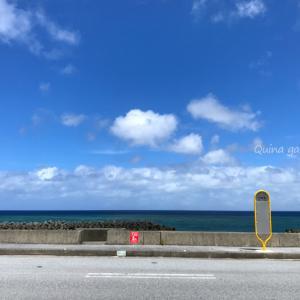 GACKTが訪れた沖縄-爆買い☆スター恩返し第3弾!ロケ地おさらい