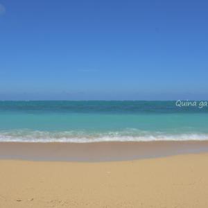 青い海を見に西へ東へ沖縄本島を横断【沖縄長期滞在5日目】
