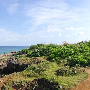 横山だいすけお兄さんが訪れた沖縄-遠くへ行きたいロケ地おさらい