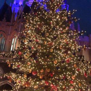 35周年ディズニークリスマス 夜の部