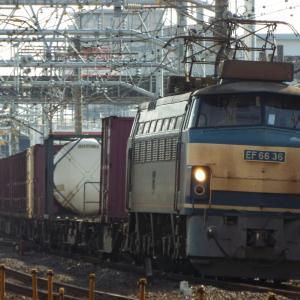鎌倉踏切 5094レ EF66 36