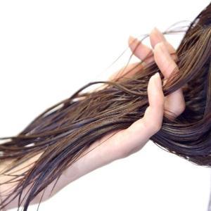 髪に油分は必要か否か?