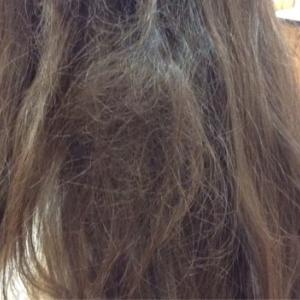 髪の絡まりの上手なほどき方☆