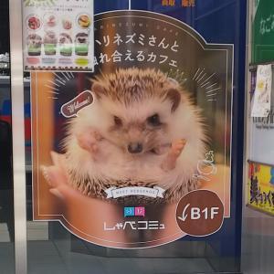 しゃべコミュ 仙台店