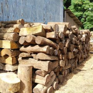 薪原木のはなし