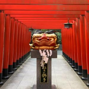 田村神社へ安産祈願に✨