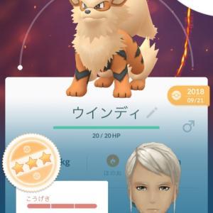 【ポケモンGO】3vガーディをウインディに進化!