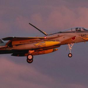 306飛行隊40周年記念塗装機を捕獲!