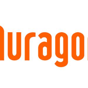 【ブログを始めたい方へ】ブログをはじめるならどこ?おすすめは無料ブログ「ムラゴン」です!