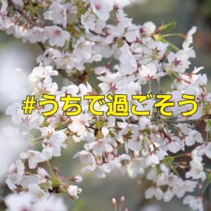 大阪府の外出自粛要請に伴い週末の活動をセーブさせていただきます。