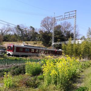 新田辺に春が来ました